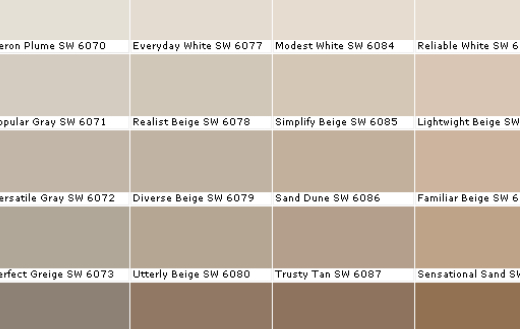 What Paint Color Goes With Builder Beige